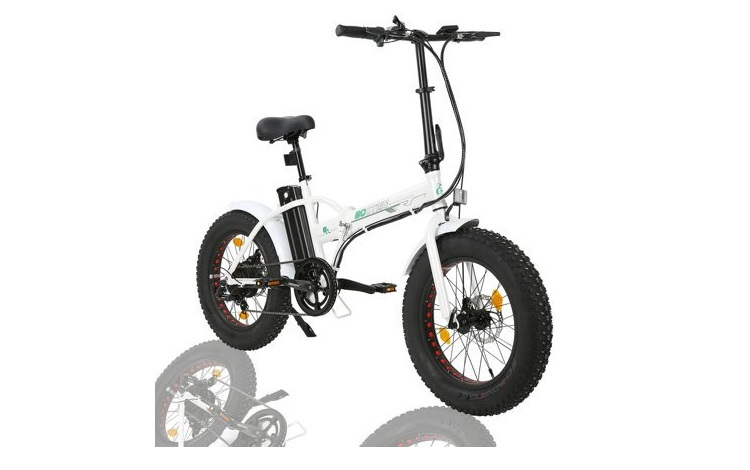 """Ecotric 20"""" Folding Fat Tire Electric Bike Review"""
