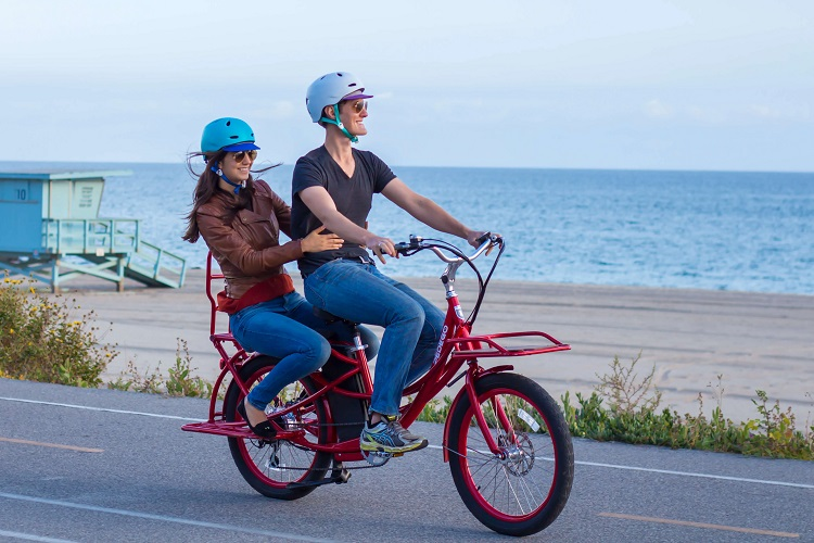 basic features of beach cruisers